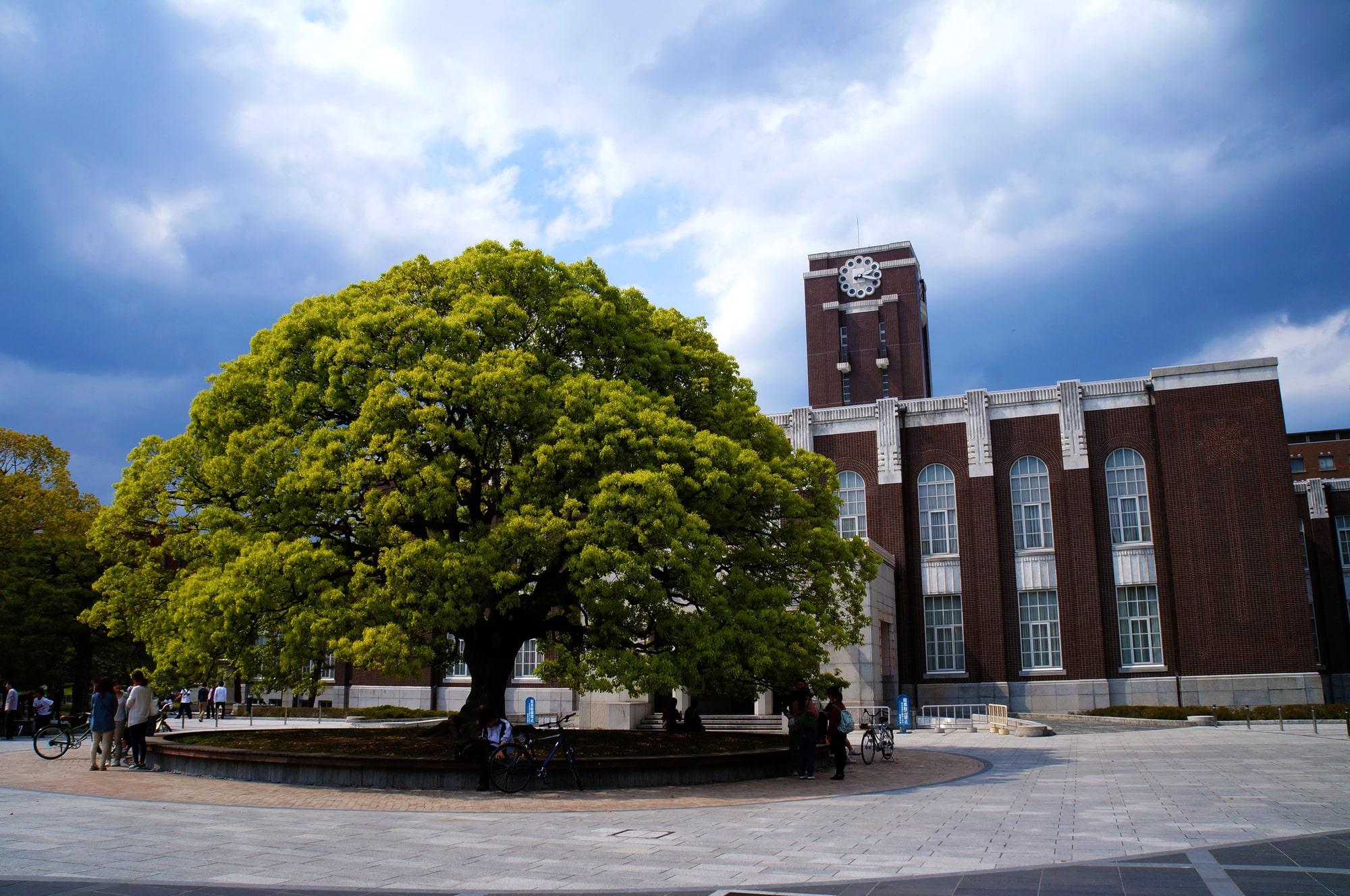 入試 国立 大学